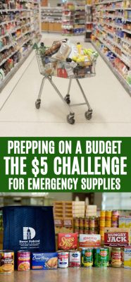 Prepping cheap
