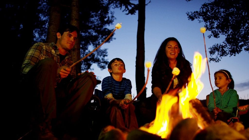 american-caucasian-family-camping-and-toasting-smores-in-forest-on-holiday_bjabgezv
